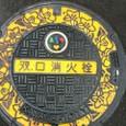 2011/08/22 神奈川県川崎市中原区