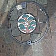 2011/10/20 12:41 神奈川県藤沢市湘南台 黒松カラー